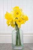 Daffodils в бутылке на белой предпосылке beadboard Стоковые Изображения