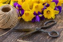 Daffodils и irise пасхи стоковая фотография