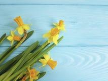 Daffodils красивые на деревенской голубой деревянной предпосылке свадьбы романтичной Стоковые Фотографии RF