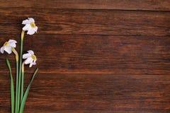 Daffodils на деревянной предпосылке, космосе экземпляра Стоковые Фотографии RF