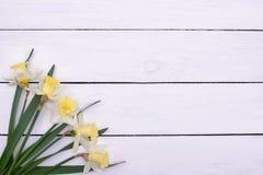 Daffodils на деревянной предпосылке, космосе экземпляра Стоковые Изображения