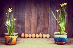 Daffodils на деревянной предпосылке сверху, космос экземпляра Стоковые Фотографии RF