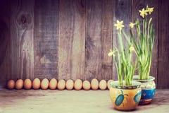 Daffodils на деревянной предпосылке сверху, космос экземпляра Стоковая Фотография