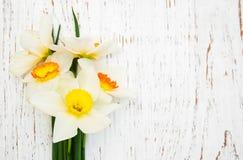 Daffodils на деревянной предпосылке Стоковое Изображение