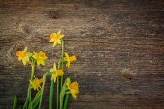 Daffodils на деревянной предпосылке Стоковое Фото