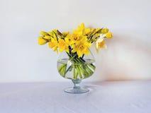 Daffodils Στοκ φωτογραφία με δικαίωμα ελεύθερης χρήσης
