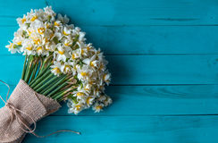 Daffodils στοκ φωτογραφίες
