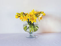 Daffodils. Beautiful yellow daffodils in a vase Royalty Free Stock Photo