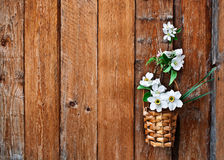 Daffodils and blossoming apple tree branch in a basket Stock Photo