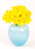 Daffodils in a blue vase Stock Photos