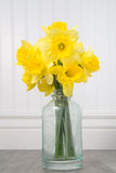 Daffodils in a bottle on a white beadboard background Stock Images