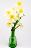 Daffodils Bunch Royalty Free Stock Photo