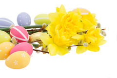 Daffodils  with catkins and easter eggs Royalty Free Stock Image