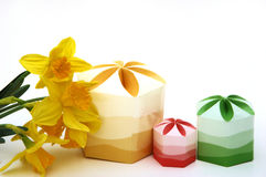 Daffodils e contenitori di regalo Fotografia Stock