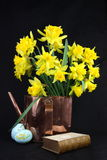 Daffodils for Easter Royalty Free Stock Images