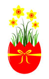 Daffodils in egg pot Stock Photo