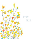 Daffodils floral graphic background Royalty Free Stock Photography