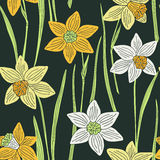 Daffodils floral seamless pattern Stock Photography