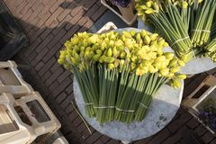 Daffodils on the flower market in Amsterdam for sale Stock Images