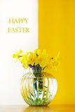 Daffodils in a glass vase Royalty Free Stock Photo