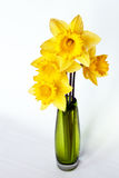 Daffodils in Green Vase Royalty Free Stock Photography