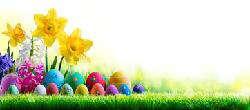 Daffodils Hyacinths And Decorated Eggs On Green Meadow - Easter Holiday Royalty Free Stock Images
