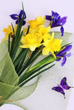 Daffodils and iris bouquet. Bouquet made of spring flower daffodils and iris stock photography