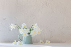 Daffodils in jug on white background Stock Photography