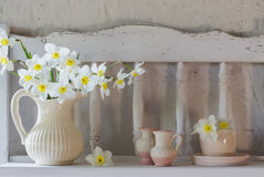 Daffodils in jug on white background Stock Images