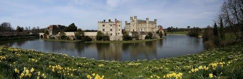 Daffodils kent da mola de Leeds Castle Imagem de Stock Royalty Free