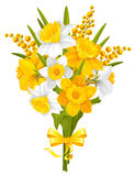 Daffodils and mimoses Stock Image