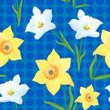 Daffodils na zieleni Background-01 Fotografia Royalty Free