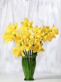 daffodils nadokienni Obraz Stock