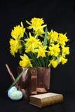 Daffodils per Pasqua Immagini Stock Libere da Diritti