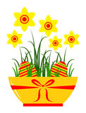 Daffodils in pot Stock Image
