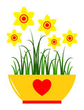 Daffodils in pot Royalty Free Stock Photos