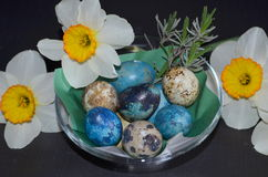 Daffodils and quail eggs Stock Images