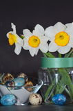 Daffodils and quail eggs Royalty Free Stock Photo