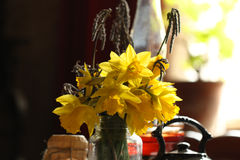 Daffodils in retro interior Stock Photography