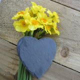 Daffodils with slate heart Stock Photos