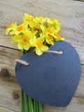 Daffodils with slate heart Stock Image