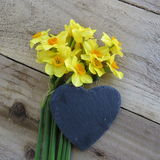 Daffodils with slate heart Royalty Free Stock Photography