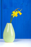 Daffodils in a small vase Stock Images