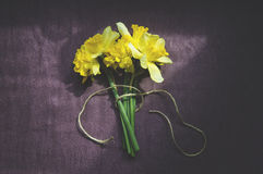 Daffodils on the table Royalty Free Stock Photography