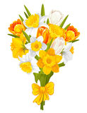 Daffodils and tulips Stock Photos