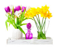 Daffodils, tulips, easter decoration Royalty Free Stock Photography