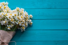 Daffodils. On turquoise wooden background Stock Images