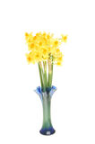 Daffodils in a vase Stock Photo