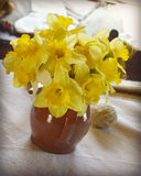 Daffodils in a Vase Stock Images
