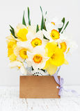 Daffodils in a vase Royalty Free Stock Photos